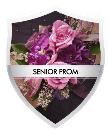 Old Bridge Prom Limo Service