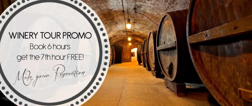 New Jersey Wine Tour promo